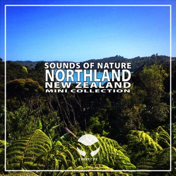Nature sounds and ambiences, captured at the coast of Northland, New Zealand.